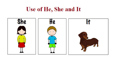 use of he she it